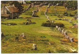 CPM FRANCE 56 MORBIHAN CARNAC - Les Alignements Mégalithiques Du Ménec - 1971 - Carnac
