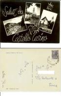 Castello Tesino, Casteltesino (Trento): Saluti E 3 Vedute - Stelle Alpine. Cartolina FG B/n Vg 1962 (timbro Postale) - Trento
