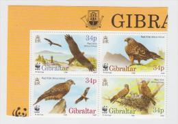 Gibraltar YV 783/6 N 1996 WWF Milan - W.W.F.