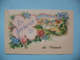 UN SOUVENIR DEVESOUL - Vesoul