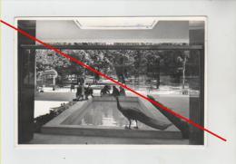 chianciano terme - stabilimento acquasanta-fontana dei pavoni-siena-provino cartolina-