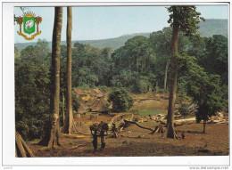 REPUBLIQUE DE COTE D´IVOIRE  -  Village Typique De La Forêt  - N° 71179S - Ivory Coast