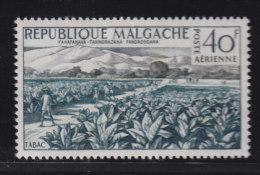 Madagascar Malagasy  Aerien aviation yt 79 ** SC .. Tabac champ .. cote = 2.30 €
