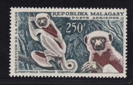 Madagascar, Malagasy  Aerien yt 86 ** SC .. l�muriens, protection de la faune .. cote  = 9.50 €