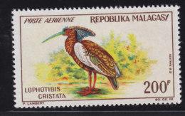Madagascar, Malagasy  Aerien, Aviation Yt 91 ** SC .. Oiseau Jhis Hupé .. Cote  = 8.50 € - Madagascar (1960-...)