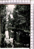 CHAGNY -   Les Rives De La  Dheune - Chagny