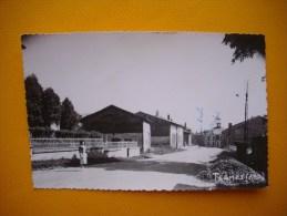 Cpsm  TERMES  -  08  -  ( Vue Du Village  )  - Ardennes  CARTE PHOTO - France