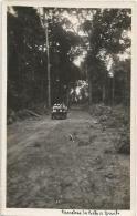 Equatorial Guinea 1920s Rio Muni carretera de Bata a Benito old timer car forest Agfa viewcard