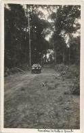 Equatorial Guinea 1920s Rio Muni Carretera De Bata A Benito Old Timer Car Forest Agfa Viewcard - Equatorial Guinea