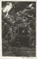 Equatorial Guinea 1920s Rio Muni colonial banano banana plantation agriculture tractor Agfa viewcard