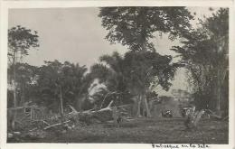 Equatorial Guinea 1920s Rio Muni perbosque en la isla Agfa viewcard