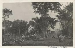 Equatorial Guinea 1920s Rio Muni Perbosque En La Isla Agfa Viewcard - Equatorial Guinea