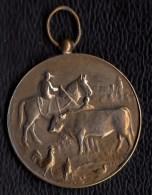SUPERBE MEDAILLE Signée H. HEUSERS 1928 - Concours De Cheval DIXMUDE Paardenprijskamp DIKSMUIDE - Non Classés