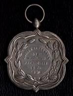 SUPERBE MEDAILLE  1898 CONCOURS AGRICOLE VACHES FLANDRE OCC. 50fr  - WEST VLAANDEREN KOEIEN EN VEERZEN - Belgium