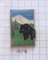 MOUNTAINEERING - VAGANJSKI VRH 1758 M. VELEBIT (Croatia) / Alpinism Climbing & Speleology Cave Grotte, Bear Ours - Alpinisme