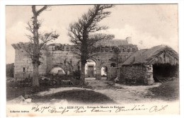 29 - Kerlouan - Ruines Du Manoir De Kerivoas - Editeur: Andrieu N°261 - Kerlouan