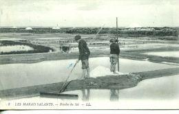 N°616A -cpa Les Marais Salants -récolte Du Sel- - Other