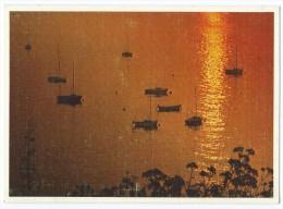 8008 - Et Dans La Paix Du Soir Qui Sur La Mer Tombait Soudain Brilla ... - Voiliers - Circulée 1986 - Scan Recto-Verso - Controluce