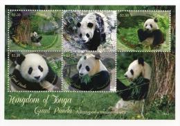 ton1308s1 Tonga 2013  Giant Panda s/s