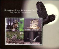 ton1211s1 Tonga 2012  Owls Bird Air Post Special Delivery s/s Scott: CE6