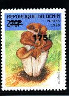 Bénin 2005  (Champignon Hohenbuehelia  Géogenia ) **  Luxe  -  RARE - Funghi