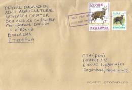 Ethiopia 2005 Adet Postal Agency Bushbuck Antilope Cover - Ethiopië