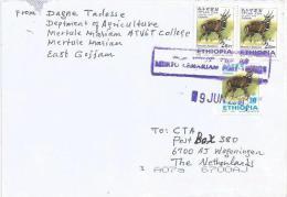 Ethiopia 2010 Merto Lemariam Postal Agency Bushbuck Antilope Cover - Ethiopië