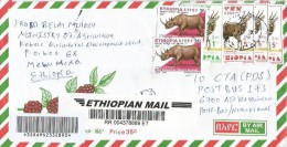 Ethiopia 2010 Mehai Meda Rhino Bushbuck Barcoded Registered Cover - Ethiopië