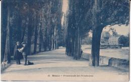 FRANCE ,  OLD POSTCARD  MEAUX  TRAVEL 1925. , Dogs - Meaux