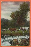 NOV363, Vaches, 2882, Fantaisie,  Circulée 1913 Cachet Locle - Koeien