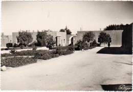 Maroc, Tiznit, Région - Maroc