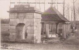 FONTAINE FRANCAISE (COTE D'OR) 14455 MONUMENT HENRI IV - Autres Communes