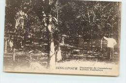 SNGAPOUR  - Plantation De Caoutchouc. - Singapore