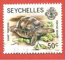 SEYCHELLES USATO - 1980 - Zil Elwannyen Sesel - Wildlife- Giant Tortoise - 50 Cent- Michel SC-ZE 7 - Seychelles (1976-...)