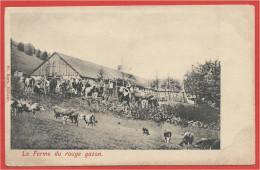68 - HAUTES VOSGES - GAZON ROUGE - Melkerei - Ferme Auberge - France