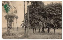 BEYNES-- La Mauldre-- Vue Du Pont Du Grand Moulin (aval) éd Breger  ---carte Précurseur - Beynes