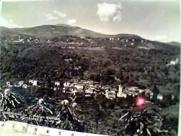 BROVELLO CARPUGNINO CON  GIGNESE  VERBANIA    V 1956 EO1118 - Verbania