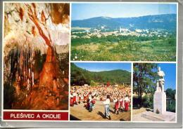 Carte Postale,Plesivec A Okolie,Gombaseckà Jaskyna, Grotte De Gombasek, Slovaquie - Tchéquie