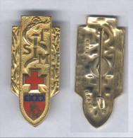 Insigne De La 1ére Section D'Infirmiers Militaires - Services Médicaux