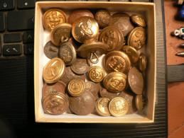 LOT COLLECTION DE 41 BOUTONS MILITAIRES MARINE - Unclassified