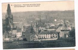 Grammont, Panorama De La Ville Haute / Geeraardsbergen, Zicht Der Hoogstad, Circulée - Edit. Coll. Bertels - Geraardsbergen