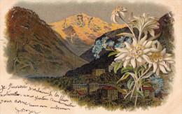 Paysage Alpestre Et Edelweiss - Suisse