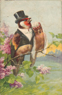 2 Oiseaux Sur La Branche - Autres