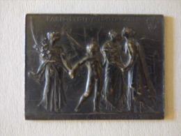 Medaille  Argent  Paris Lyon Méditerranée   Chemin De Fer  Par Roty - Zonder Classificatie