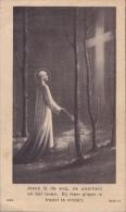 Doodsprentje (6480) Aalter - Knesselare - HALLAERT / CORNELIS 1849 - 1935 - Images Religieuses