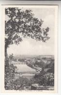 Huy, Panorama Sur La Meuse (pk15411) - Huy