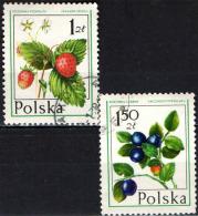 POLONIA - 1977 - FRUTTI DI BOSCO - Oblitérés