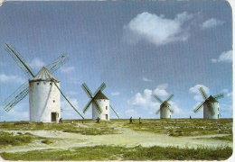 CALENDARIO DEL AÑO 1974 DE UNOS MOLINOS (CALENDRIER-CALENDAR) MOLINO-MILL-MOULIN - Tamaño Pequeño : 1971-80