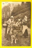 LAITIERE FLAMANDE & ATTELAGE De CHIEN Hondenkar Melk-meisje Dog Drawn Cart Milk-maid Voiture à Chiens Hundekarre 2176 - Autres
