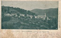 ITALIE - Valle D'Intelvi - PELLIO INFERIORE (1900) - Como